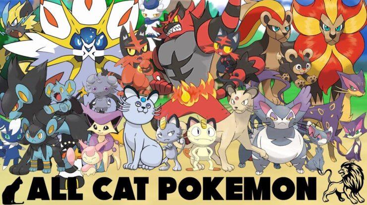 cat pokemon